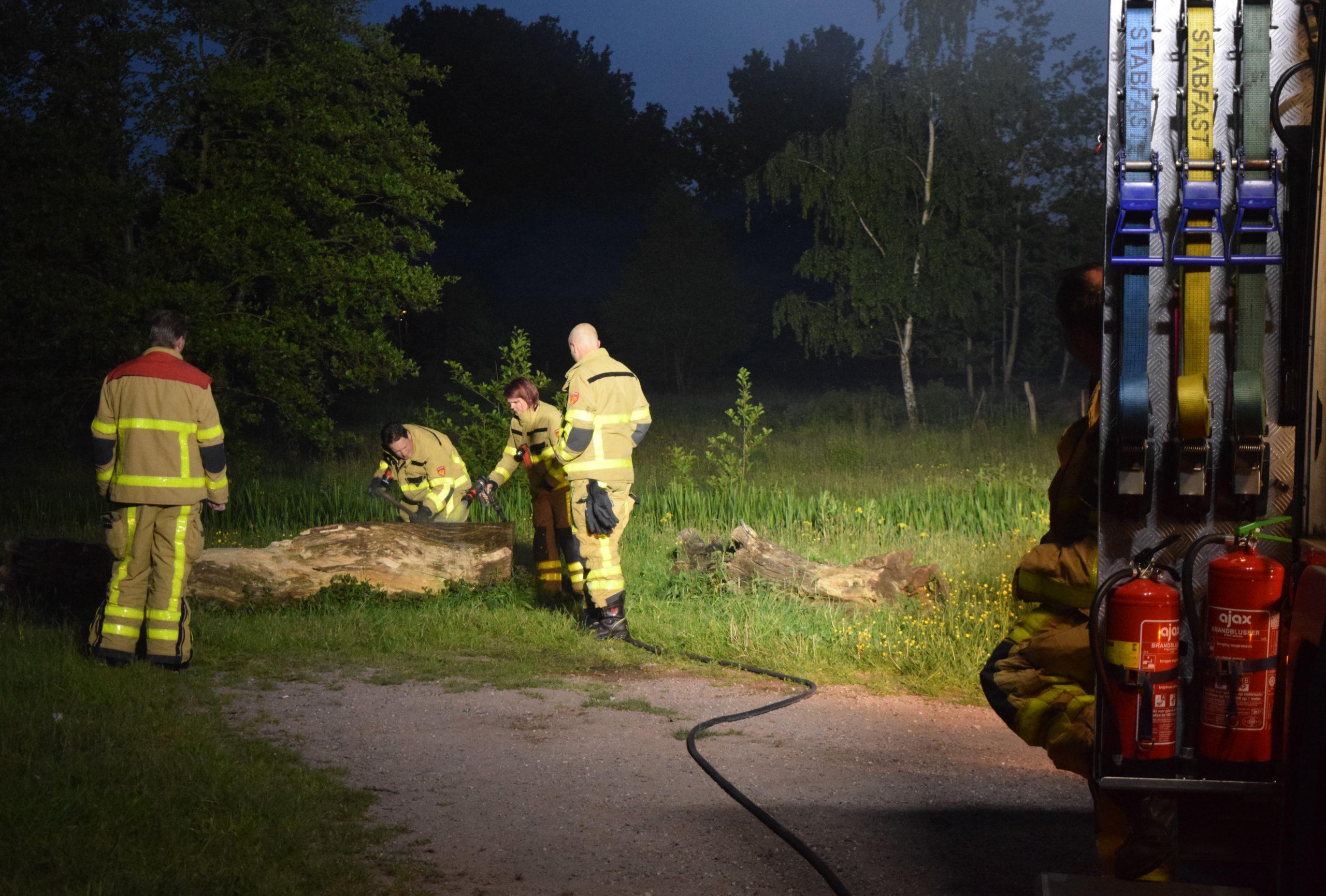 Smeulend brandje in boomstam bij een parkje.