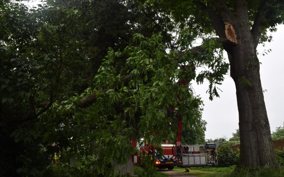 Afgebroken boomtak veroorzaakt brandweer Doetinchem aardig wat kopzorgen